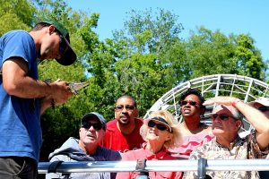 guide introducing guests to baby gator