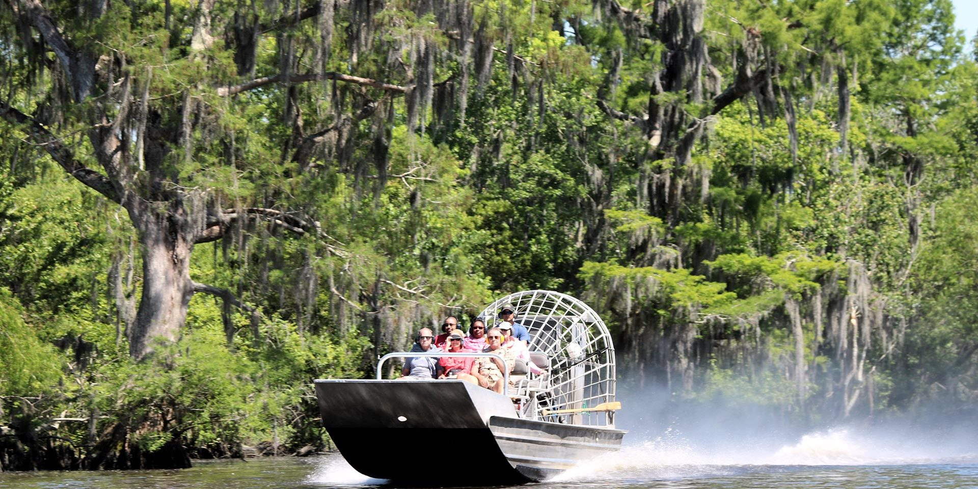 Small Or Large Airboat Swamp Tour